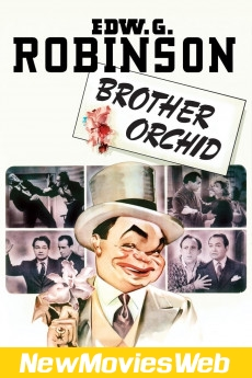 Brother Orchid-Poster new movies to rent