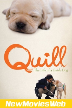 Quill The Life of a Guide Dog-Poster new release movies