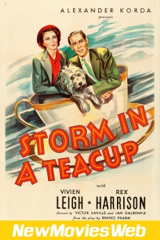 Storm in a Teacup-Poster new movies out