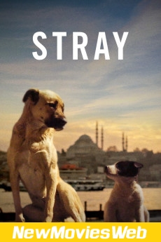 Stray-Poster new movies on netflix