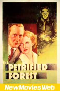 The Petrified Forest-Poster new movies to watch