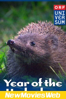 Year of the Hedgehog-Poster new movies to watch